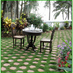 About Terrace Garden Chennai Roof Garden Kitchen Garden